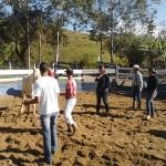 Treinamento no Redondel do Haras Santa Rita da Bela Vista